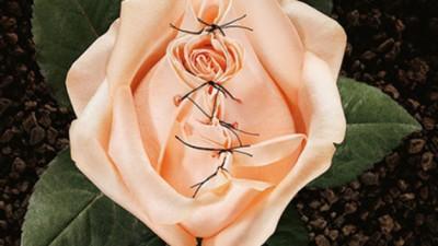 NK советует: истории переживших женское обрезание